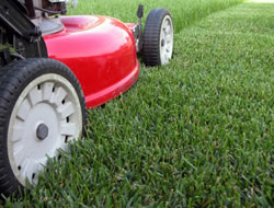 Landscaping ServiceReviews In Orange County